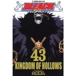 BLEACH死神  (43)