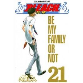 BLEACH死神  (21)
