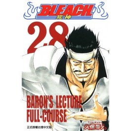 BLEACH死神  (28)