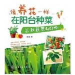 像养花一样在阳台种菜:盆栽蔬菜
