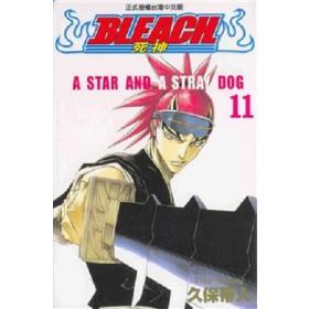 BLEACH死神  (11)