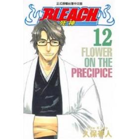 BLEACH死神  (12)