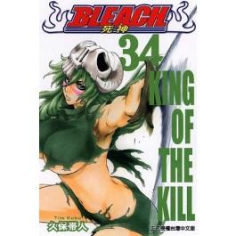 BLEACH死神  (34)