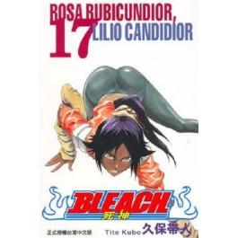 BLEACH死神  (17)