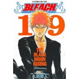 BLEACH死神  (19)