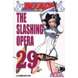 BLEACH死神  (29)