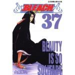 BLEACH死神  (37)