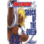 BLEACH死神  (42)