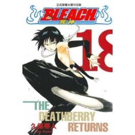 BLEACH死神  (18)