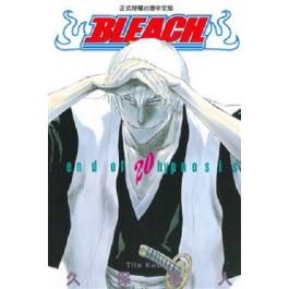 BLEACH死神  (20)