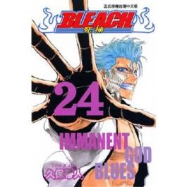 BLEACH死神  (24)