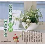 盆栽装饰绿意居家生活