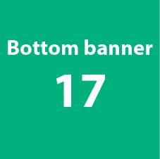 bottombanner-17