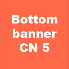 bottom banner cn 2