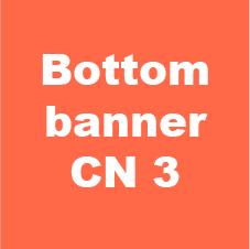 bottom banner cn 4