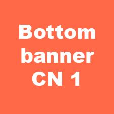 bottom banner cn 6