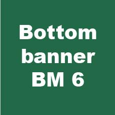bottom banner bm 1