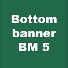 bottom banner bm 2